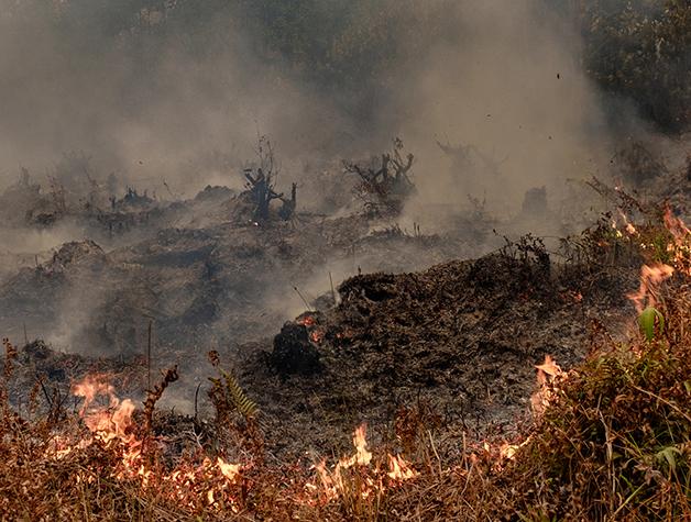 Incêndio nas matas de Palangkaraya, na Indonésia