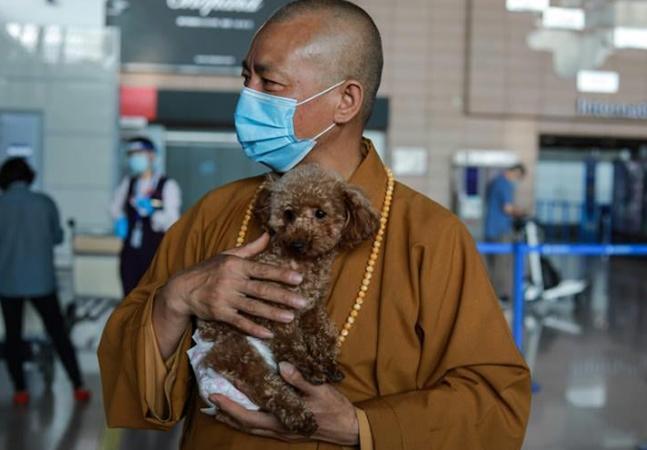 O monge budista que já resgatou dezenas de milhares de animais desde 1994