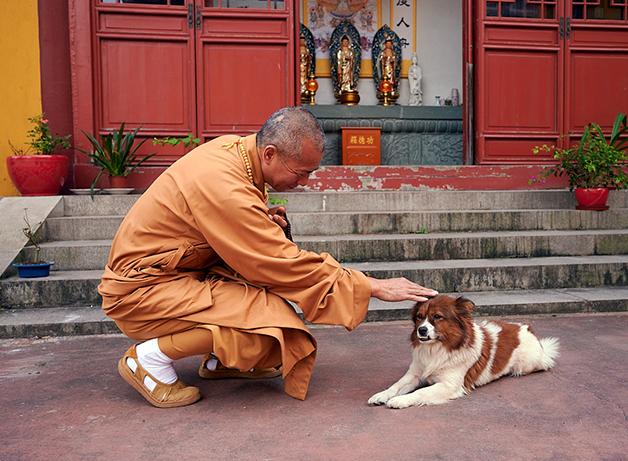 O monge Zhixiang