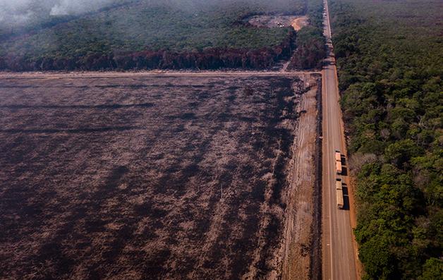 Queimada à beira de estrada na Amazônia paraense