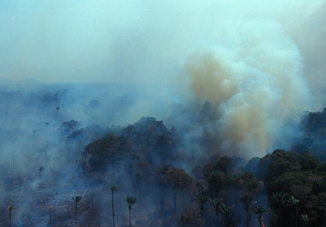 Amazônia emite mais gás carbônico do que absorve; processo de degradação é inédito