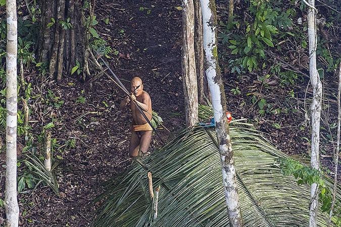 Indígenas isolados na mira do governo federal em PL que pode causar genocídio; entenda