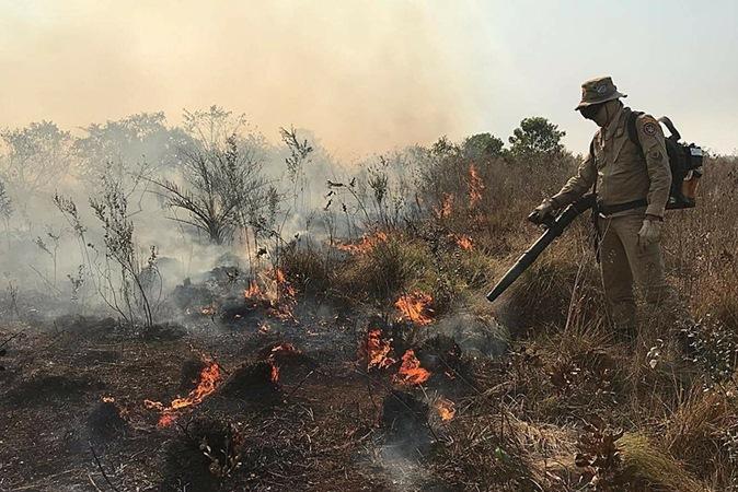 Pantanal deve sofrer com incêndio mais intenso do que pior destruição do século