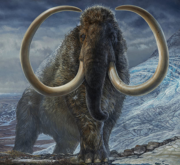 Representação artística do mamute Kik
