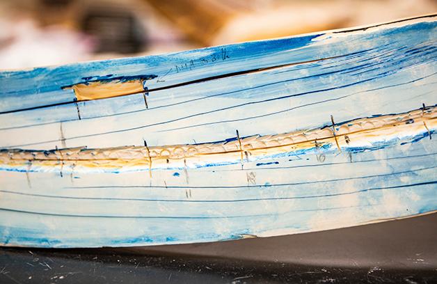 Detalhe dos filamentos de uma das lâminas retiradas da presa de Kik