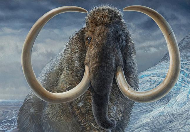 Cientistas refazem em detalhes a jornada de vida de um mamute no Alasca há 17 mil anos