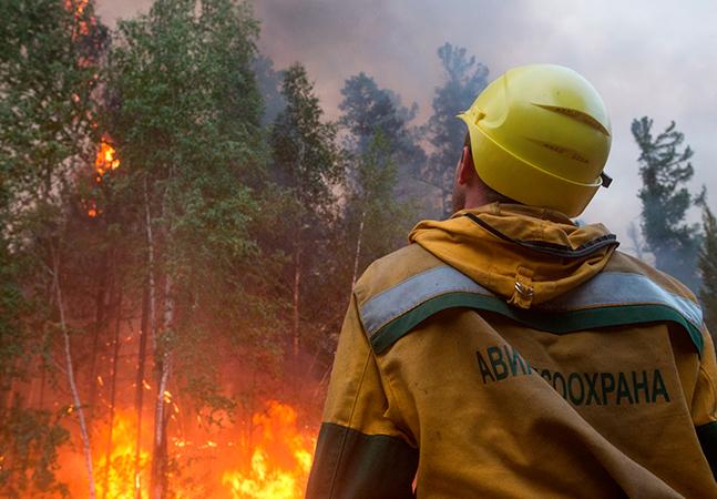 Incêndios na Sibéria queimam área do tamanho de Portugal e fumaça chega ao Polo Norte