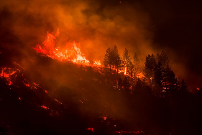 Conexão entre incêndios florestais e aumento de casos e mortes por Covid-19 é tema de estudo