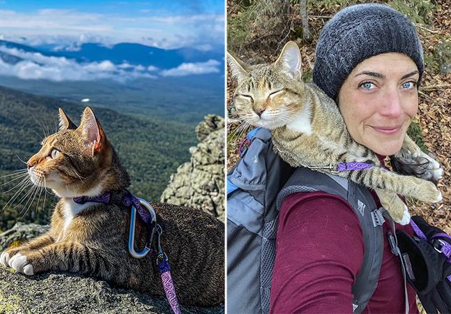 Gata posa plena ao escalar as 48 montanhas mais altas de New Hampshire, nos EUA, ao lado da tutora