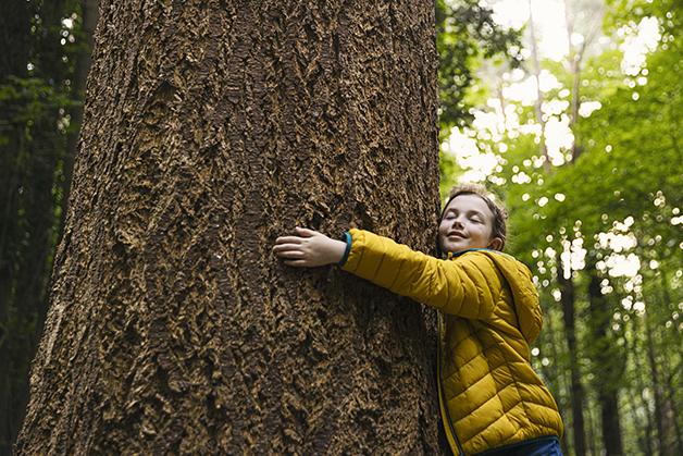 Criança abraçando árvore