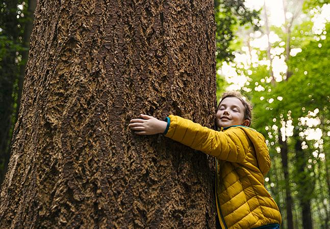 Contato com as árvores ajuda no desenvolvimento cognitivo dos jovens, diz estudo