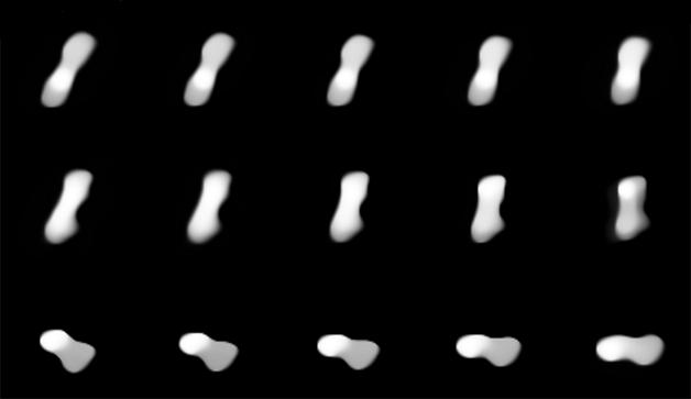 O asteróide 216 Cleópatra