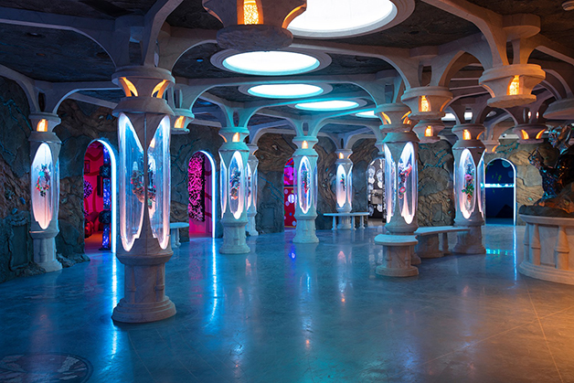 Convergence Station, do Meow Wolf