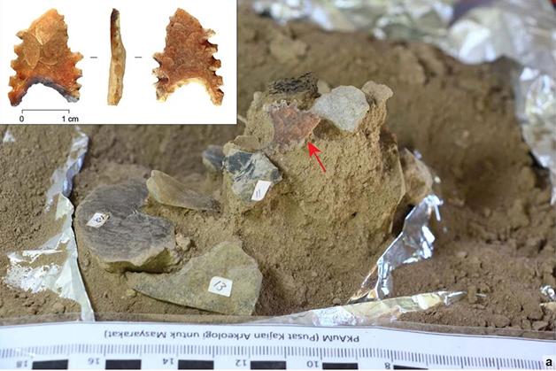 Algumas das ferramentas Toalean encontradas junto ao crânio