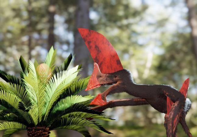 O incrível fóssil completo de dinossauro que foi resgatado do tráfico