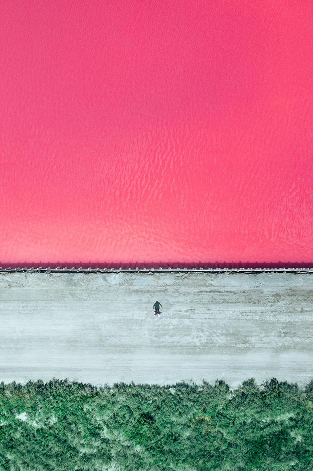 Dunaliella salina, de Paolo Pettigiani