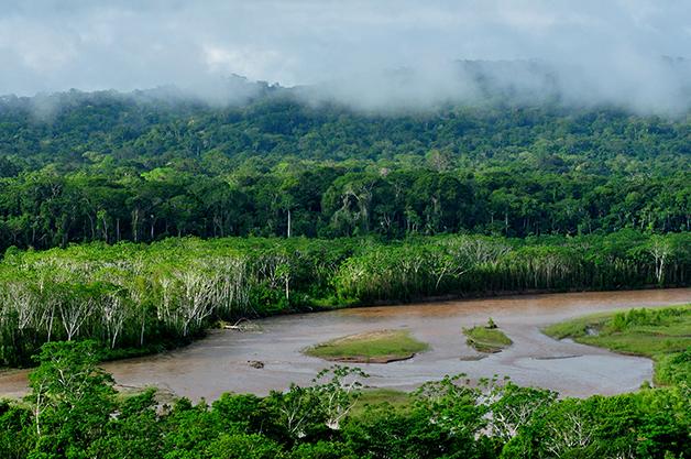 Cenário amazônico do Parque Nacional Madidi, na Bolívia