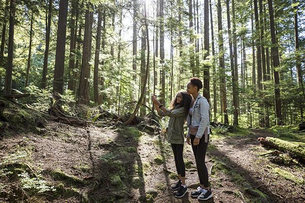 Jovens entre árvores em bosque