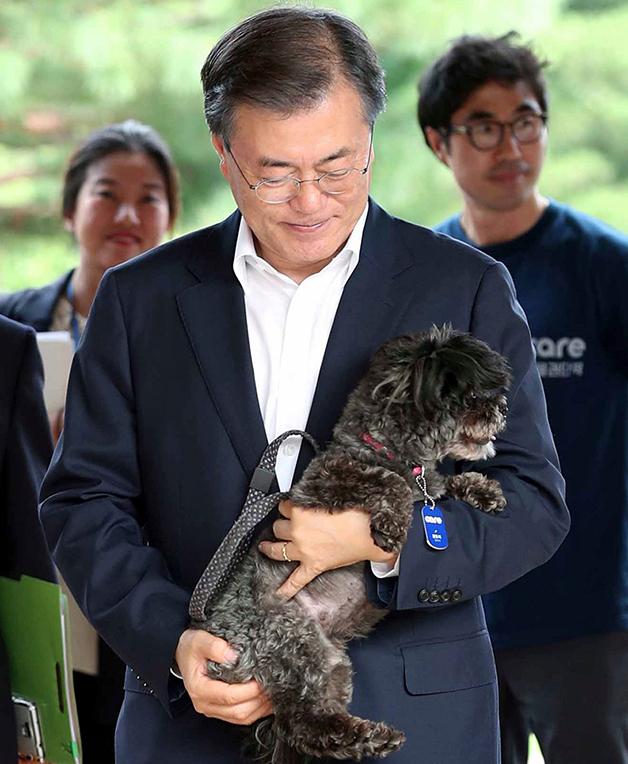 O presidente da Coréia do Sul com seu cãozinho