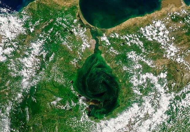 Imagens: maior lago da América do Sul está ficando verde e isso pode ser fatal