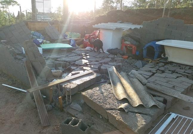 Abrigo de animais em SP é destruído pelas chuvas e donos buscam ajuda para salvar 68 cachorros