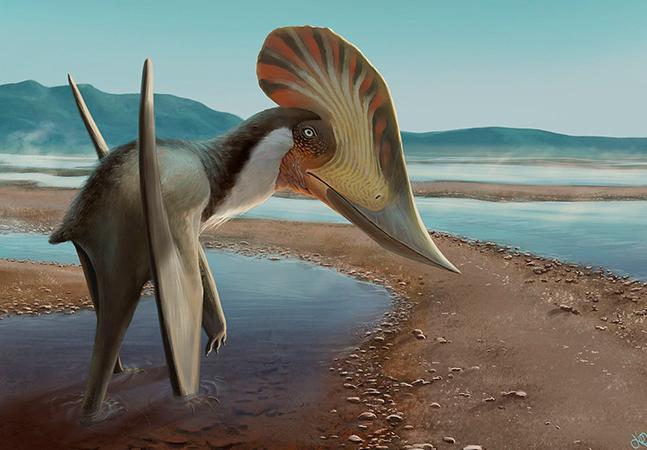 Conheça detalhes do Pterossauro brasileiro que viveu onde hoje é Chapada do Araripe