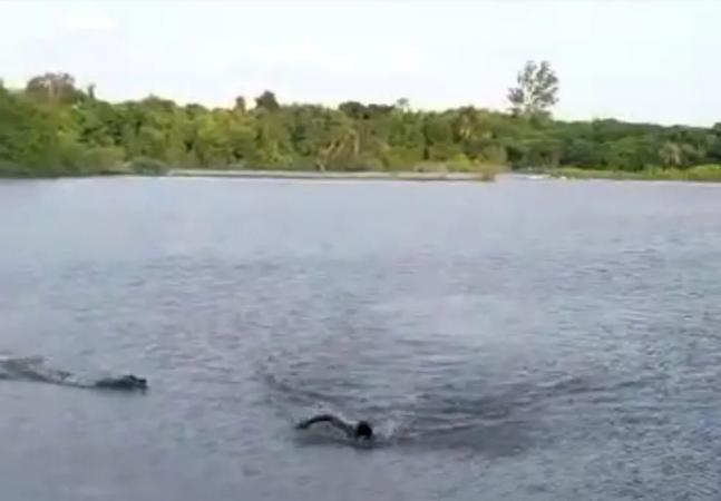 Homem é atacado por jacaré ao nadar em lago proibido no MS