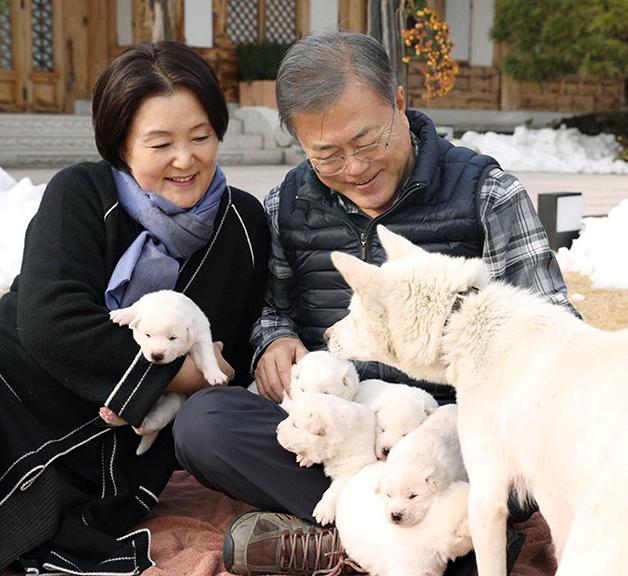 A primeira-dama Kim Jung-sook ao lado do presidente e entre outros cães, em 2018